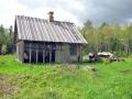 Autor: Kermo Jürmann. Järvamaa, Roosna-Alliku vald, Esna küla, Sinioru 2011. aasta suvi.