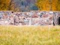 Ärka vana maja II-III koht: Jaanus Tanilsoo, oktoober 2014, Võrumaa, Haanja vald, Kilomani küla