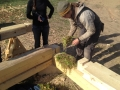 International log building workshop